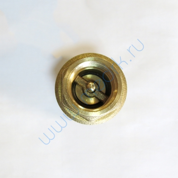 Клапан обратный 30/VA, 1 дюйм  Вид 3